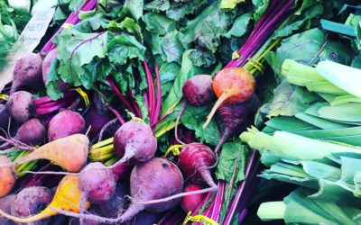Top Dietitian Tips for Powering Up on Produce in the Winter