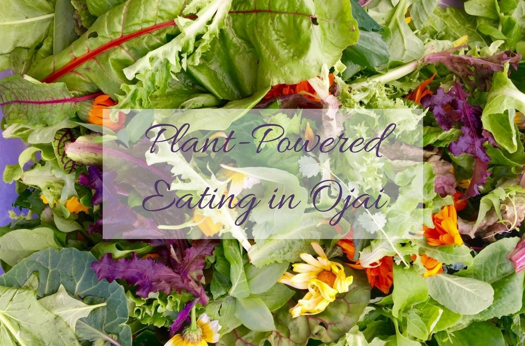 Plant-Powered Eating in Ojai