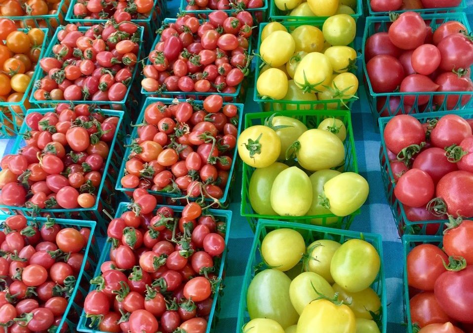 Fresh or Canned Tomatoes: How Do You Choose?
