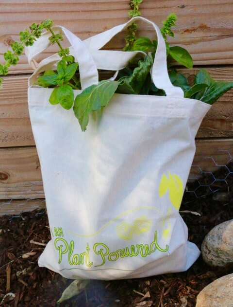farmers-market-shopping-bag