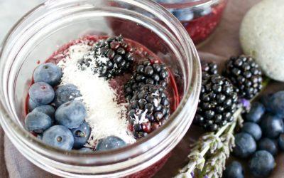 Science Saturday: Blueberries Boost Brain Function