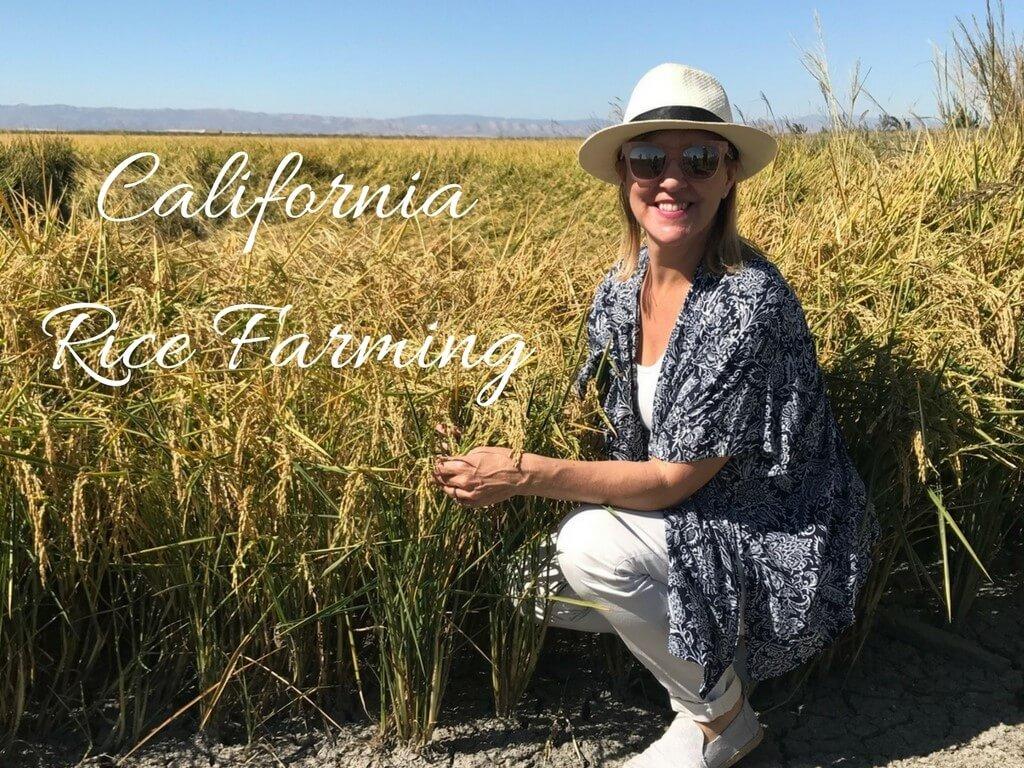California Rice Farming Sharon Palmer